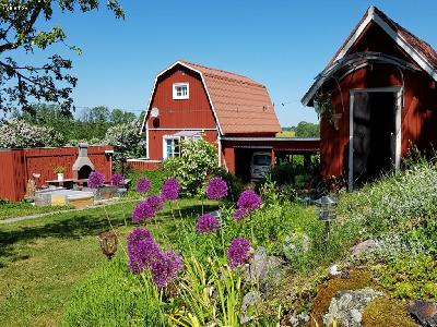 Swedish red cabin